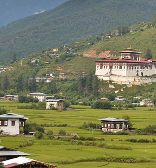 paro-view-zuri-Bhutan-all-travels-tours